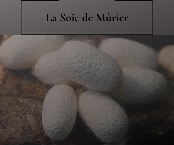 soie-de-murier